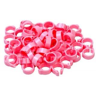 Pink Pigeon Rings