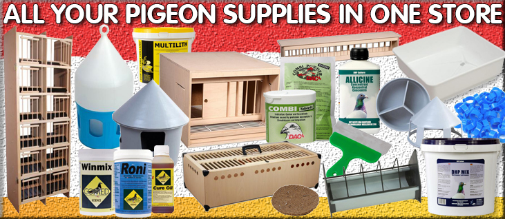 Racing Pigeon Cage And Aviary Bird Products Shop