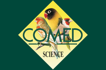 COMED BIRD