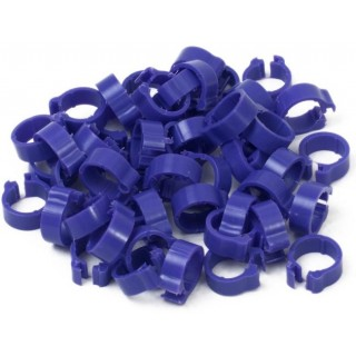 Violet 5mm Pigeon Rings