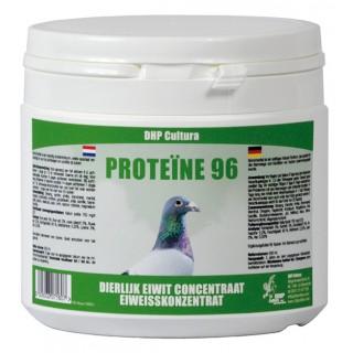 Protein 96
