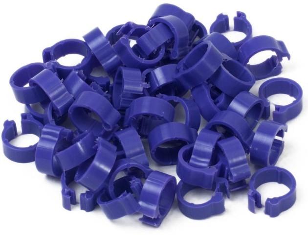 Violet 5mm Pigeon Rings