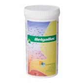 BelgaBac 300G