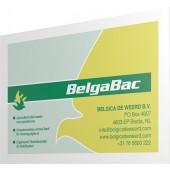 BelgaBac 10x Sachet Box